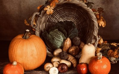 ~Grieving and Thanksgiving ~